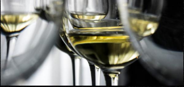Король белых вин. Дегустация рислингов