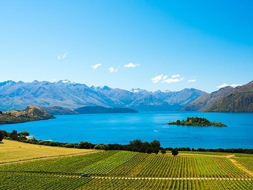 Дегустация. Новая Зеландия для души