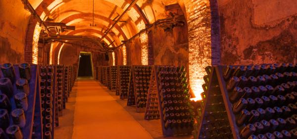 Дегустация. Маленькие сокровища Шампани с Александром Поляевым