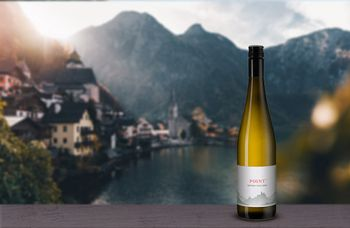 Вино недели Point Gruner Veltliner, Nigl
