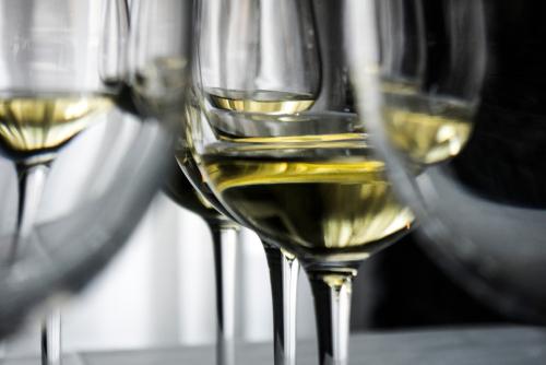 Вино и бокалы. Слепая дегустация